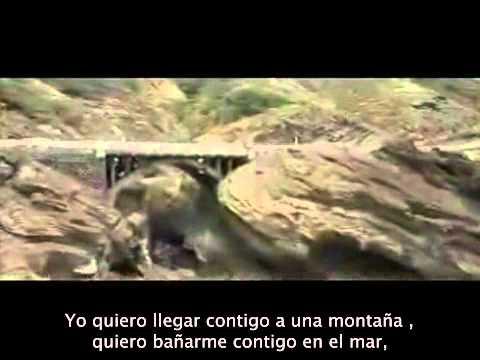 50 primeras citas online español youtube para amistad sexo Alcalá Henares-84116