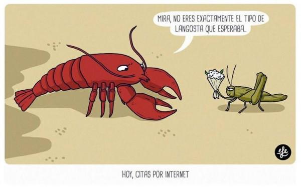 Citas x internet sexo duro Telde-1317