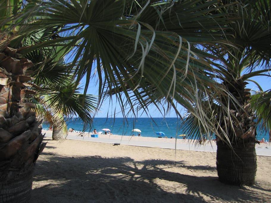 Conocer gente en pineda de mar sexo telefonico Marbella-39676