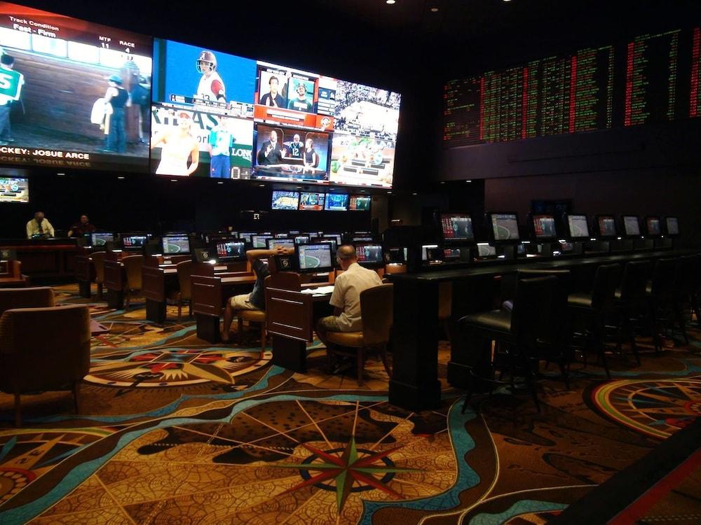 Treasure island casino horas ciervos-80070